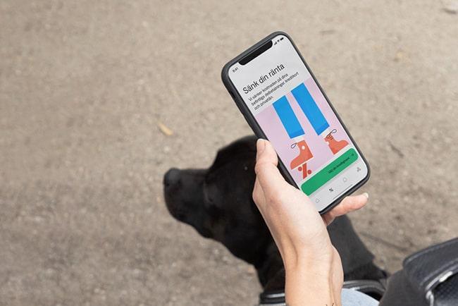 Hand håller i mobiltelefon med Anyfins app. Under syns huvudet på en svart labrador.